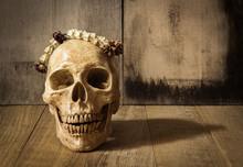 Human Skull And Garland Jasmine Still Life