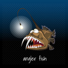 The Angler Fish With A Lantern...