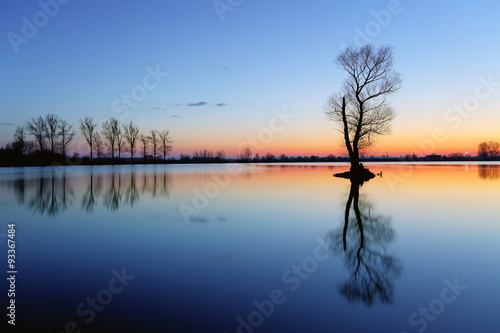Poster Lac / Etang Silhouette tree at sunset in lake