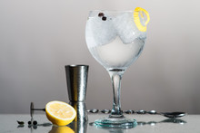 Gin Tonic With Lemon And Botan...