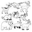 Wood and mountain animals in Black and white