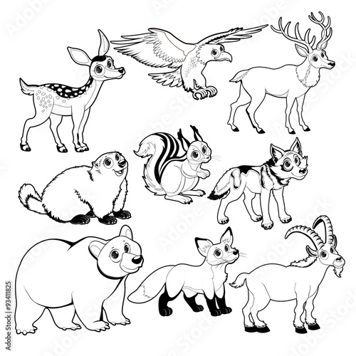 Poster Chambre d enfant Wood and mountain animals in Black and white