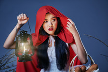 The Little Red Riding Hood Los...