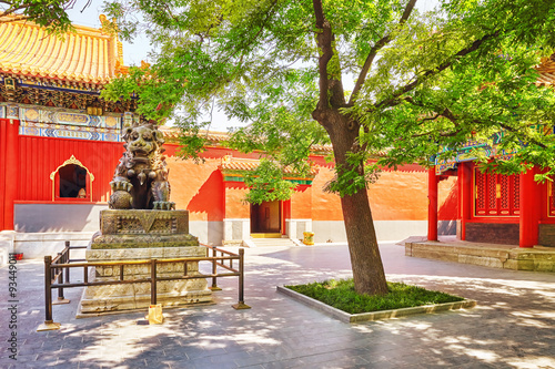 Bronze lion at the entrance to beautiful Yonghegong Lama Temple. Fototapet
