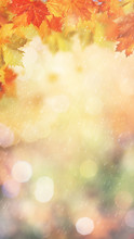 Autumnal Rain. Abstract Eco Banner For Your Design