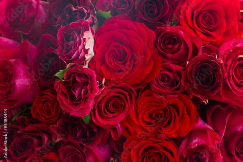 stos-czerwonych-roz