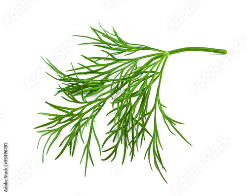 Cuadros en Lienzo fresh dill on white background