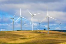Wind Turbine Farm Of Windmills Creating Renewable Energy On Top Of Hill With Cattle Farm Beneath. Taralga, New South Wales Australia.