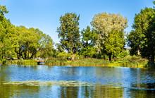 Pond Of Olga In Peterhof - Russia