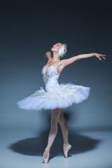 Fototapeta Portrait of the ballerina in ballet tatu on blue background