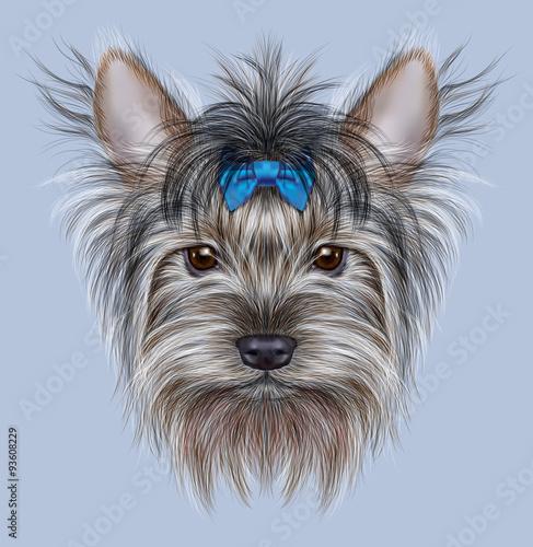 Illustrative Portrait Of A Domestic Dog Cute Head Of Yorkshire