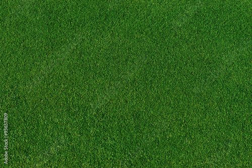 Deurstickers Gras real green grass background