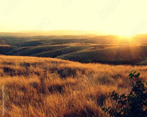 Couché de soleil sur la prairie Fototapet