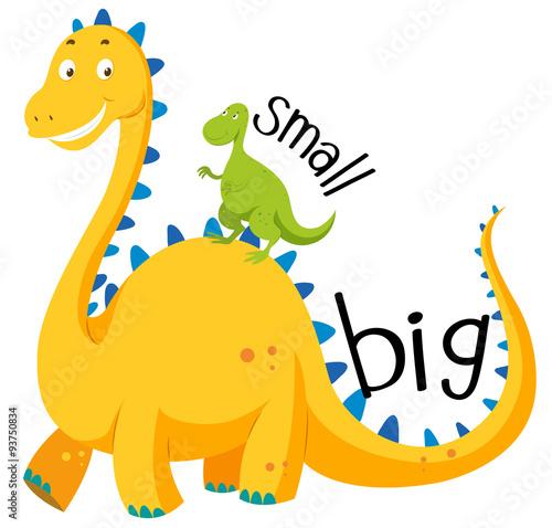 Naprzeciwko przymiotnik duży i mały