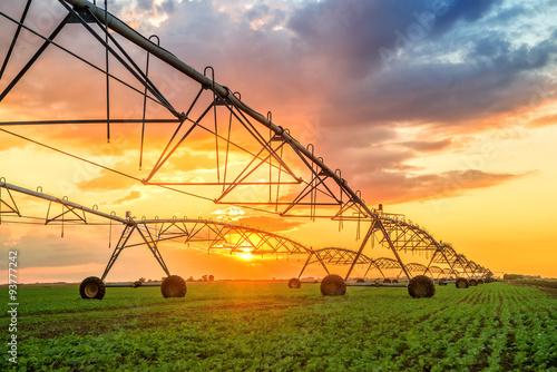 Obraz na plátne Automated farming irrigation system in sunset