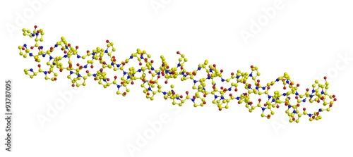 Fotografia  Molecular structure of collagen