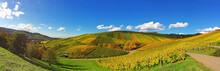 Weinberge Im Herbst Bei Weinstadt