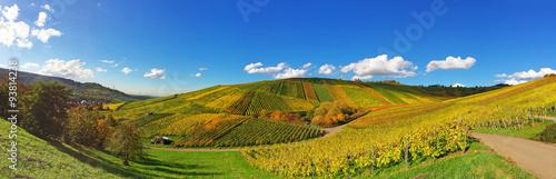 Photo sur Aluminium Vignoble Weinberge im Herbst bei Weinstadt