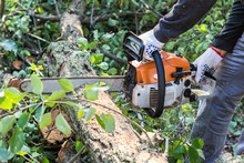 Man With Chainsaw Cutting The ...
