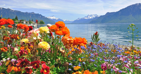 Panel Szklany Podświetlane Kwiaty Spring flowers in bloom