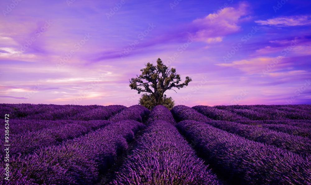 Lawendowy pole Lato zmierzchu krajobraz z drzewem <span>plik: #93863472 | autor: Vaceslav Romanov</span>