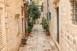 Plants vases in narrow street in the Old Town in Dubrovnik, Croatia, mediterranean ambient
