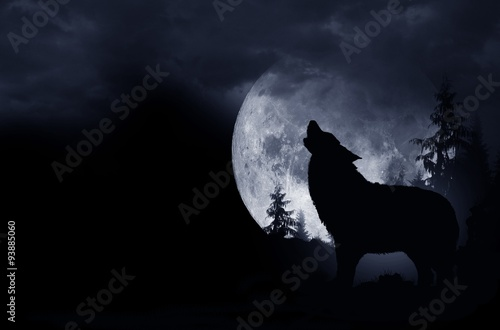 Aluminium Prints Wolf Howling Wolf Background