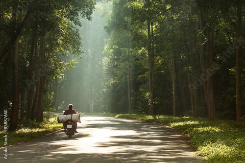 ride through light Canvas Print