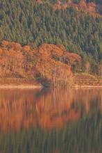当別ふくろう湖の紅葉
