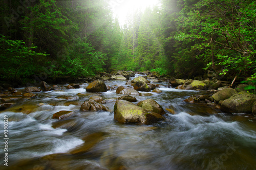 Foto auf Leinwand Fluss Mountain river