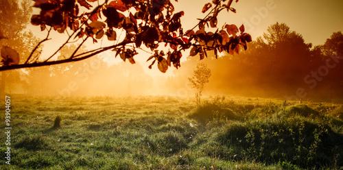 jesienny-poranek