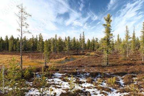 Fotografia, Obraz  Scenic landscape of nature in Siberia