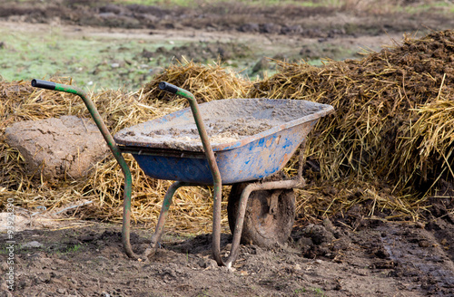 Poster Ezel Wheelbarrow with cattle manure