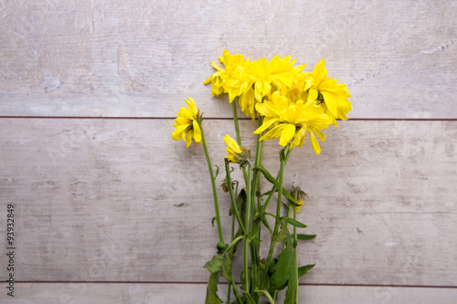 In de dag Narcis Dried yellow flowers on rustic wooden planks