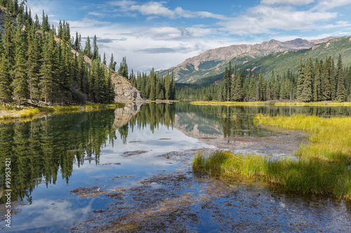 Valokuva  Alaskan landscape picture of Denali