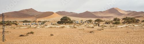 Obrazy na płótnie Canvas Deserto del Namib