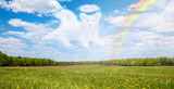 Fototapeta Rainbow - Dog Passing Over Rainbow Bridge