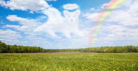 Dog Passing Over Rainbow Bridge