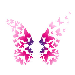 Fototapetabutterflies design