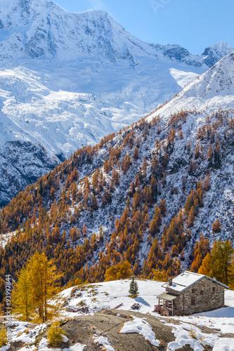 Fotografie, Obraz  Valmalenco (IT) - Chiareggio - Alpe dell'Oro