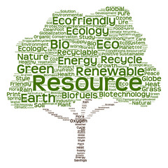Obraz na PlexiConceptual green ecology tree word cloud