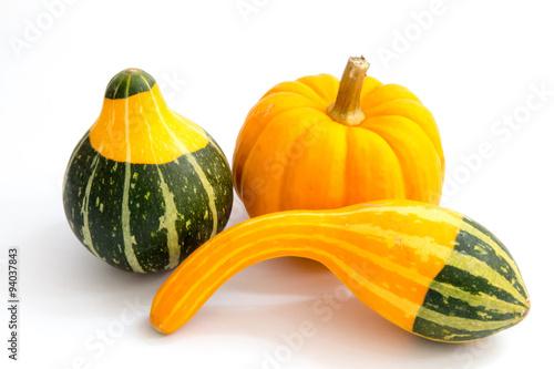 Cuadros en Lienzo Small decorative gourds and a pumpkin - Thanksgiving decoration