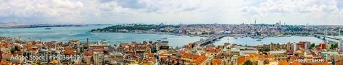 Garden Poster Vienna aerial view of golden horn bay in turkish capital istanbul