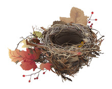 Bird's Nest In Autumn. Hand D...