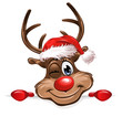 Christmas Rudolph smiling board