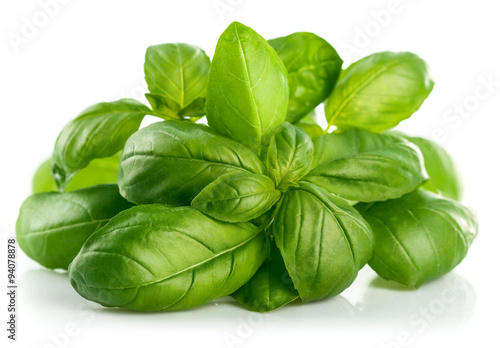 Cuadros en Lienzo Fresh green leaf basil. Isolated on white background