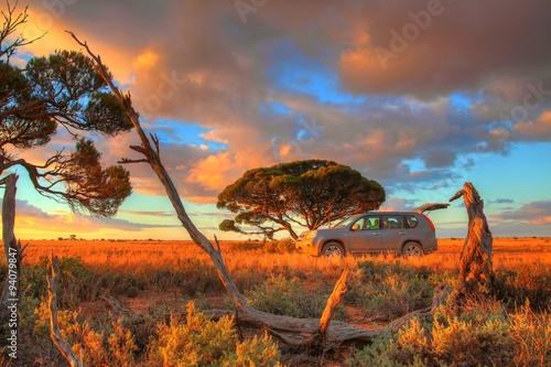 fototapeta na drzwi i meble Nullarbor Plain, Australia
