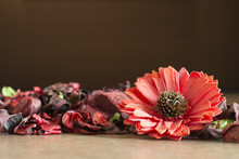 Potpourri Lying On Floor With Big Red Flower On The Right And Negative Space On Top
