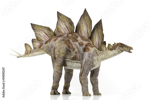 Photo  3D model Stegosaurus isolated on white background
