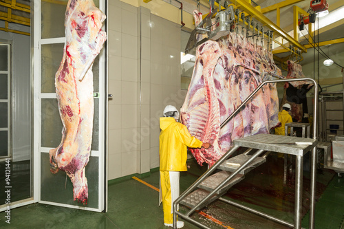 worker carcass slaughterhouse rights animal cattle abattoir sanitation beef came Wallpaper Mural